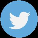 1485309084_twitter